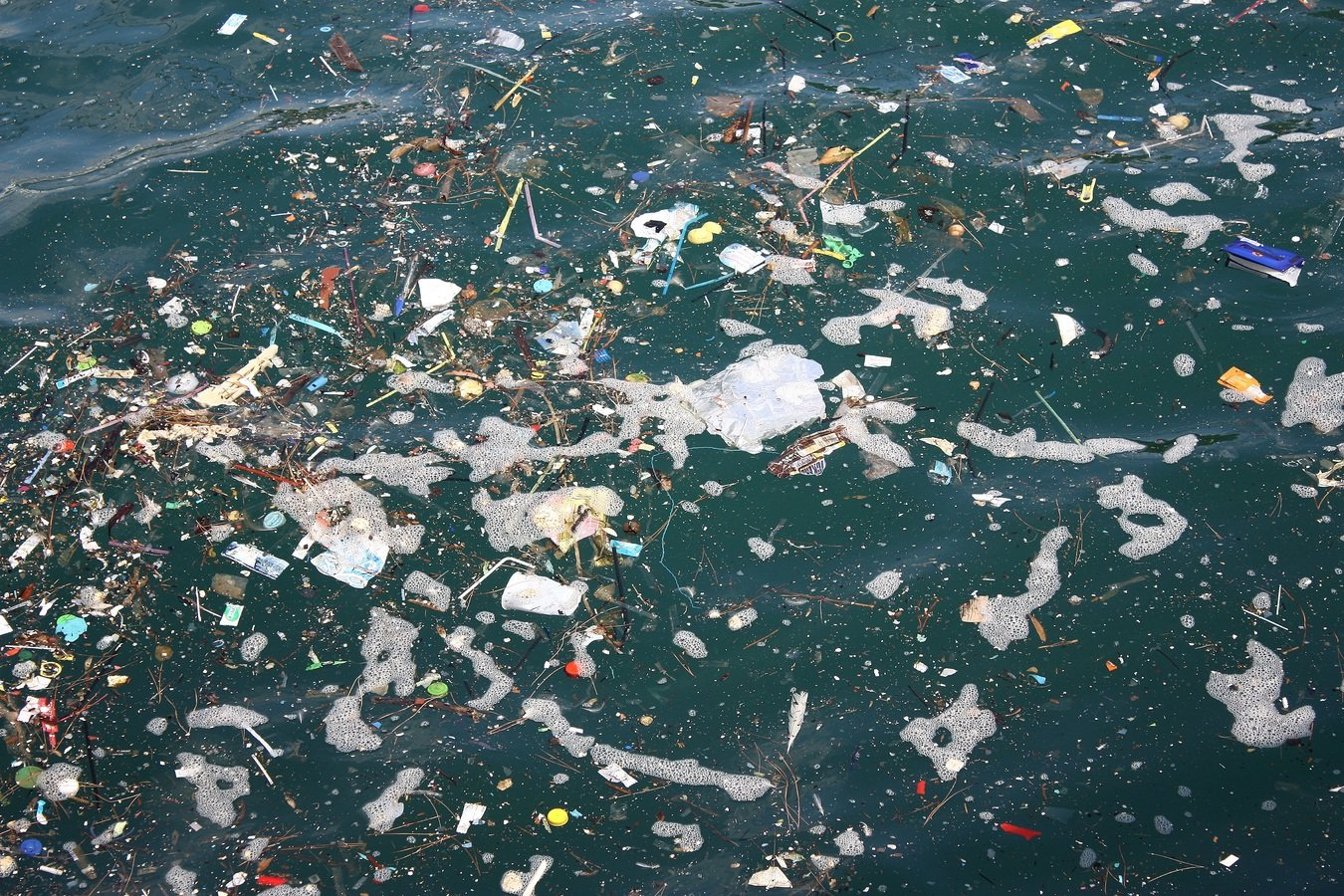 It is estimated that more than 150 million tonnes of plastics have already accumulated in the world's oceans.