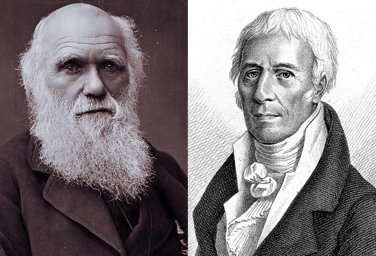 Charles Darwin (left) and Jean-Baptiste Lamarck (right) are the faces of the earliest debate about evolutionary research.